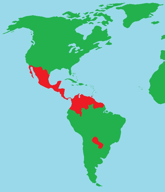 """<span class=""""translation_missing"""" title=""""translation missing: en.medium.untitled.map_image_of, page_name: &lt;i&gt;Morpho peleides&lt;/i&gt; Kollar 1850"""">Map Image Of</span>"""