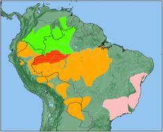 Map of titi monkeys