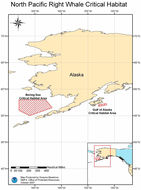 Map of North Pacific Right Whale