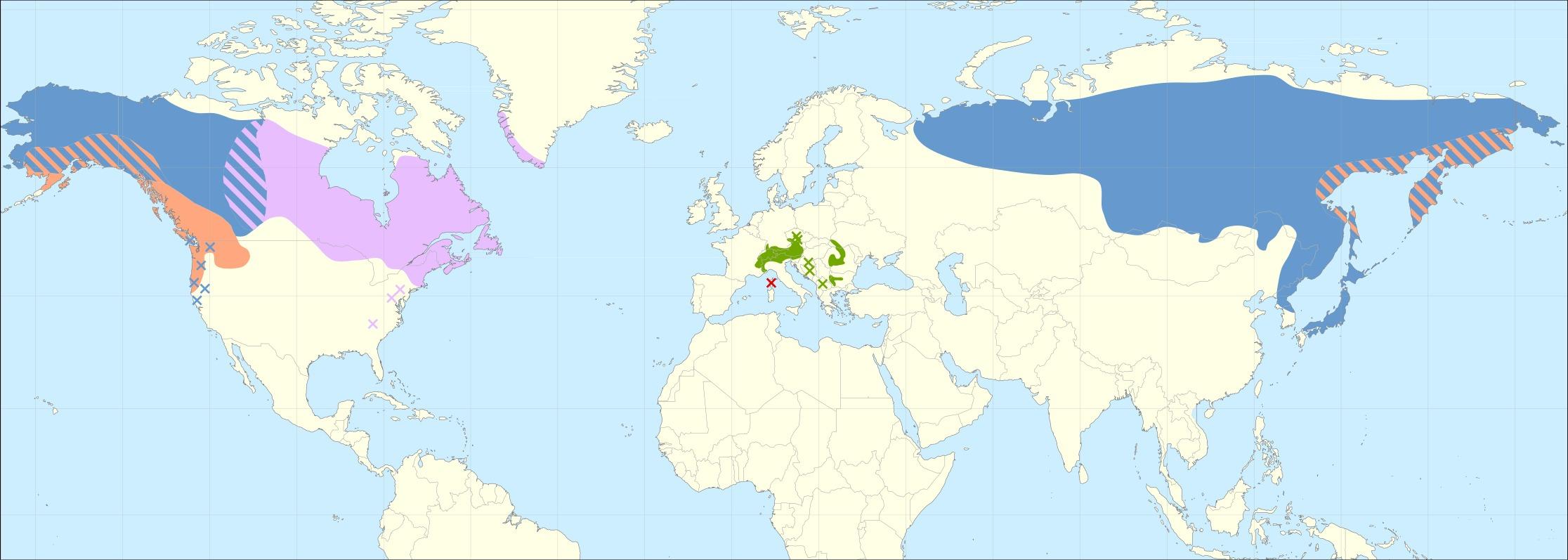 Map of <i>Alnus viridis</i>