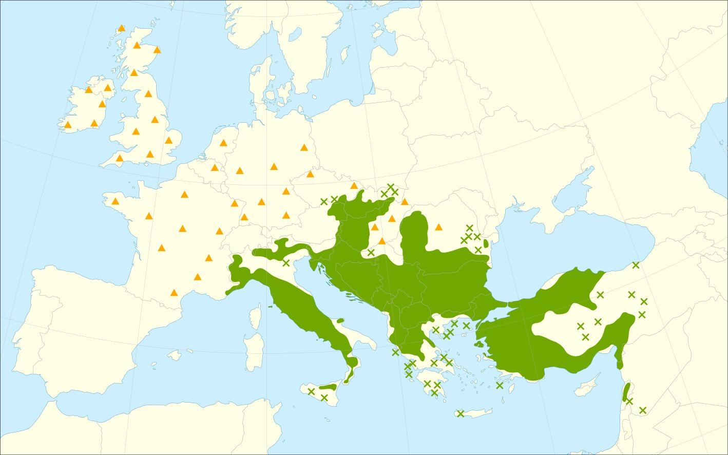 "<span class=""translation_missing"" title=""translation missing: en.medium.untitled.map_image_of, page_name: turkey oak"">Map Image Of</span>"
