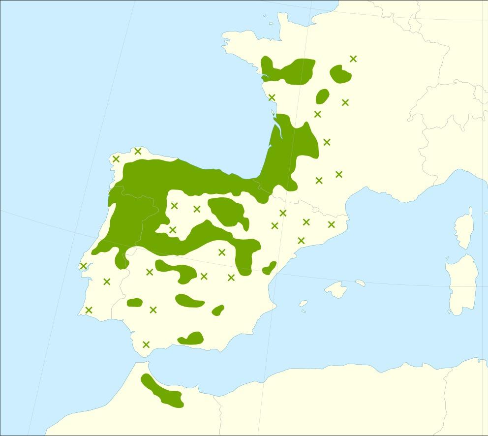 "<span class=""translation_missing"" title=""translation missing: en.medium.untitled.map_image_of, page_name: Iberian white oak"">Map Image Of</span>"