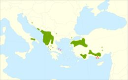 "<span class=""translation_missing"" title=""translation missing: en.medium.untitled.map_image_of, page_name: Macedonian Oak"">Map Image Of</span>"