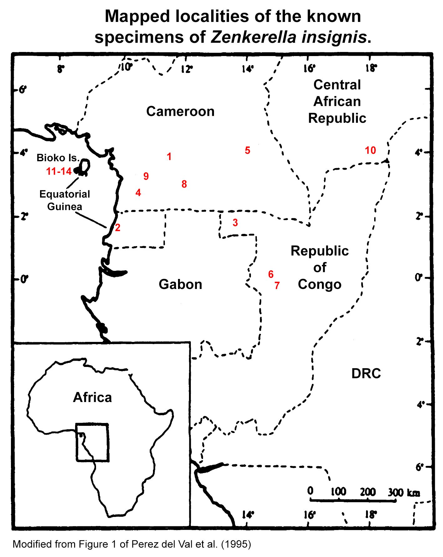 Map of Cameroon Scaly-tail