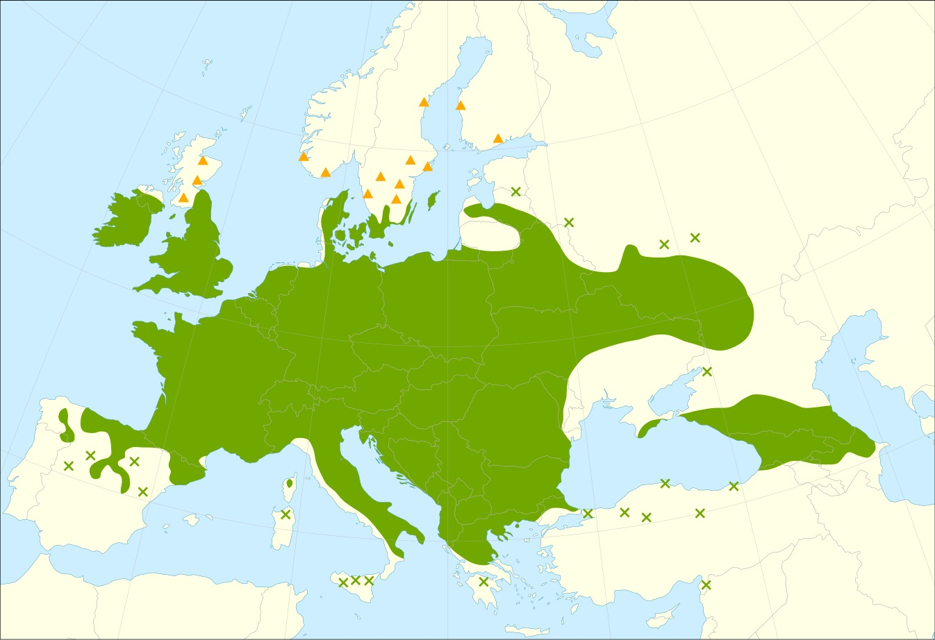 Map of European spindletree