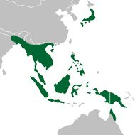 Map of Grass orchids