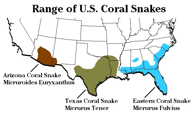 Map of American Coral Snakes