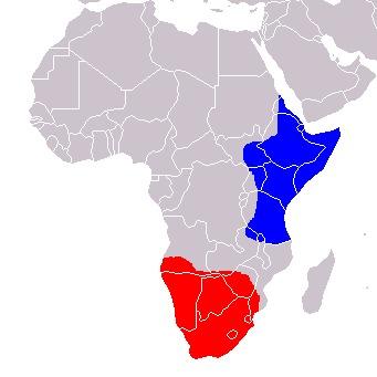 Map of Otocyon