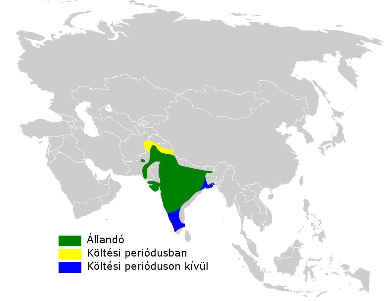 Map of Streak-throated Swallow