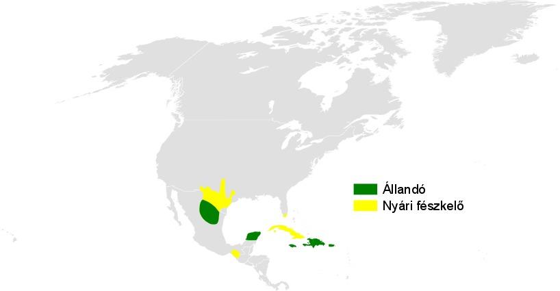 Map of Petrochelidon Cabanis 1850