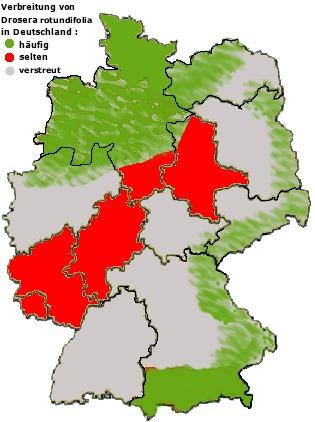 Map of Common Sundew