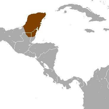 Map of Yucatan Brown Brocket
