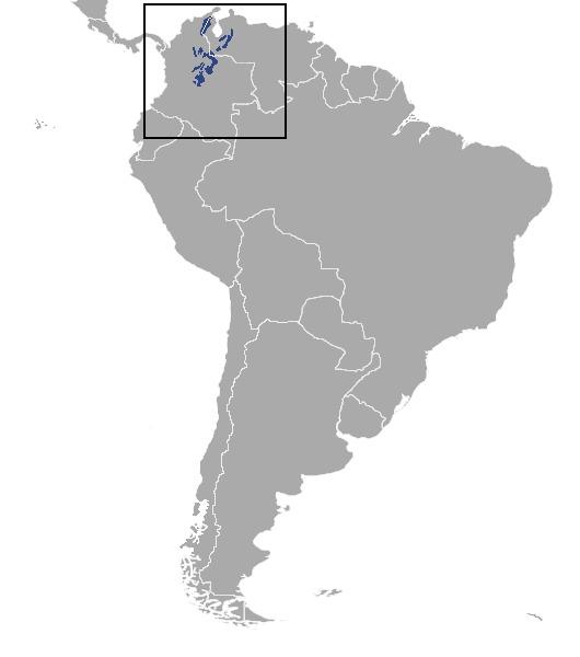 Map of Grey Dwarf Brocket
