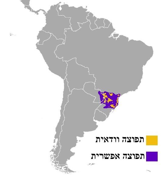 Map of Brazilian Dwarf Brocket Deer