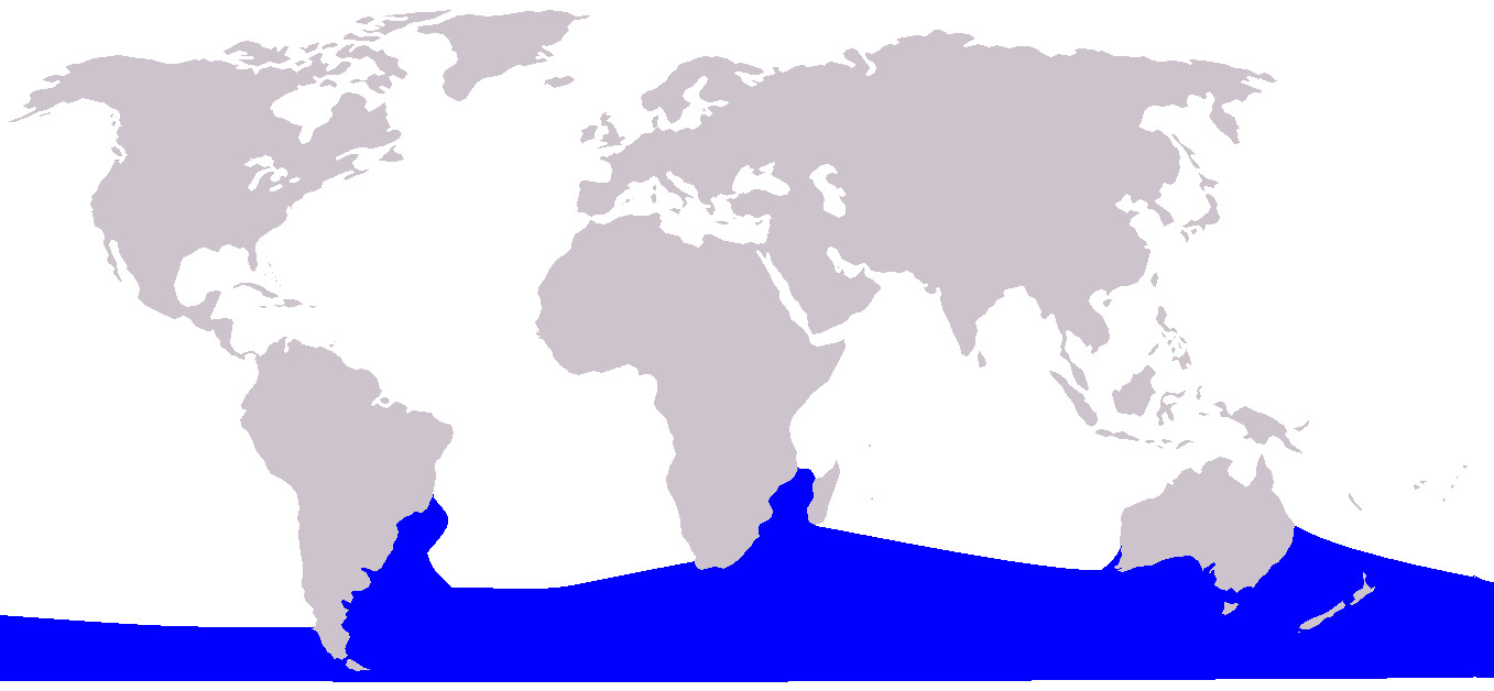 Map of Southern Right Whale