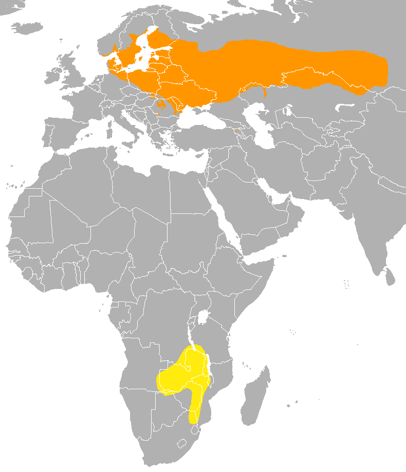 Map of Thrush nightingale