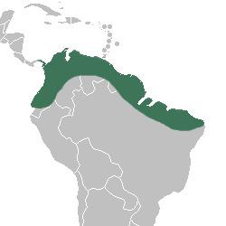 "<span class=""translation_missing"" title=""translation missing: en.medium.untitled.map_image_of, page_name: Selenipedium"">Map Image Of</span>"