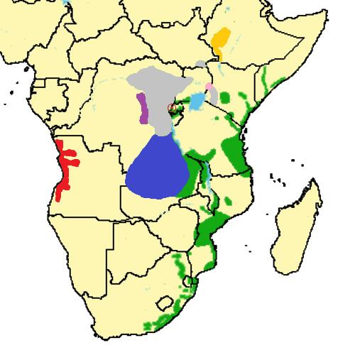 Map of blue monkey