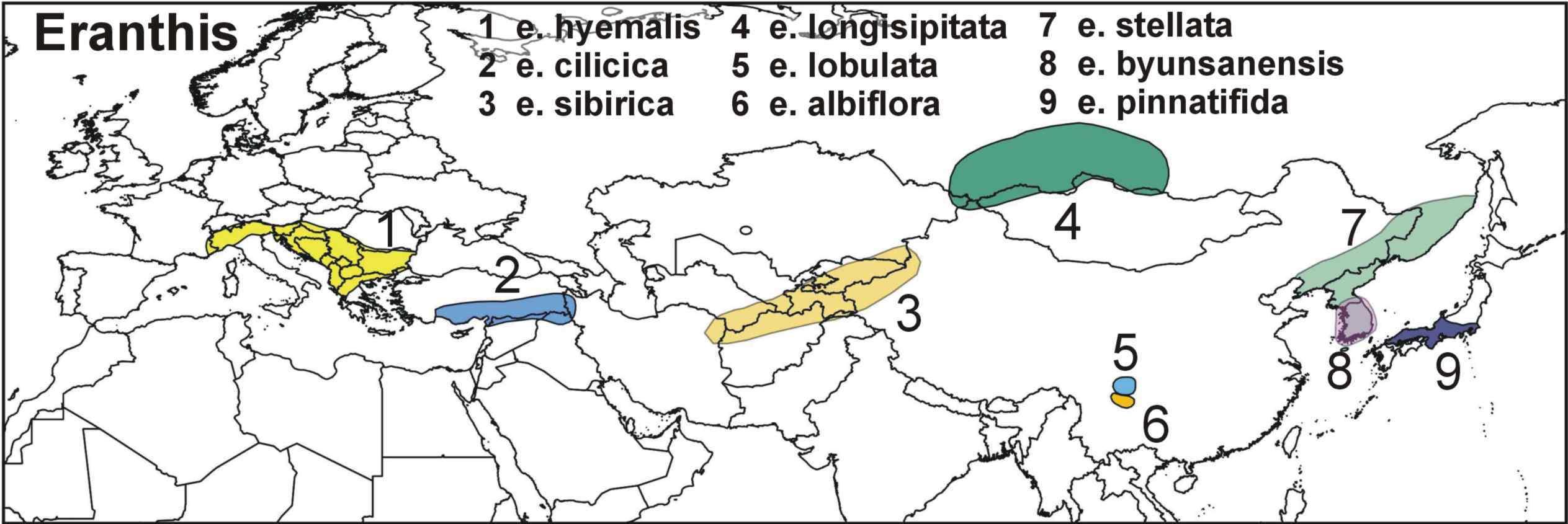 "<span class=""translation_missing"" title=""translation missing: en.medium.untitled.map_image_of, page_name: eranthis"">Map Image Of</span>"