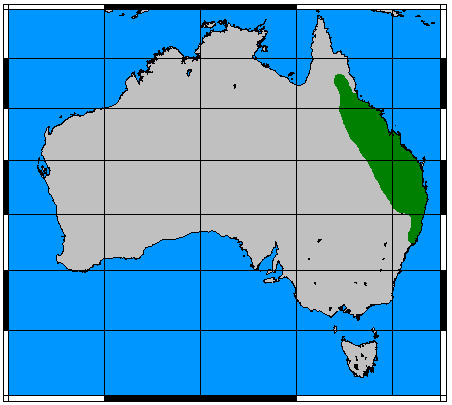 Map of Rufous Rat-kangaroo