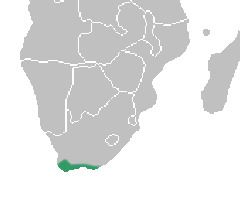 Map of Ceratandra