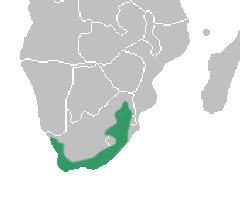 Map of Corycium