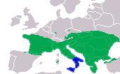 Map of Dahls Wipe Snake