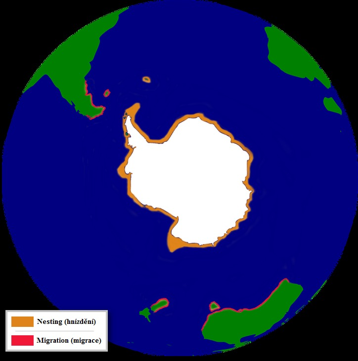 Map of Adelie Penguin