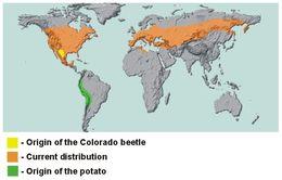 "<span class=""translation_missing"" title=""translation missing: en.medium.untitled.map_image_of, page_name: Colorado potato beetle"">Map Image Of</span>"