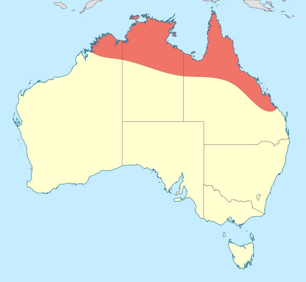 Map of Iridescent Flutterer
