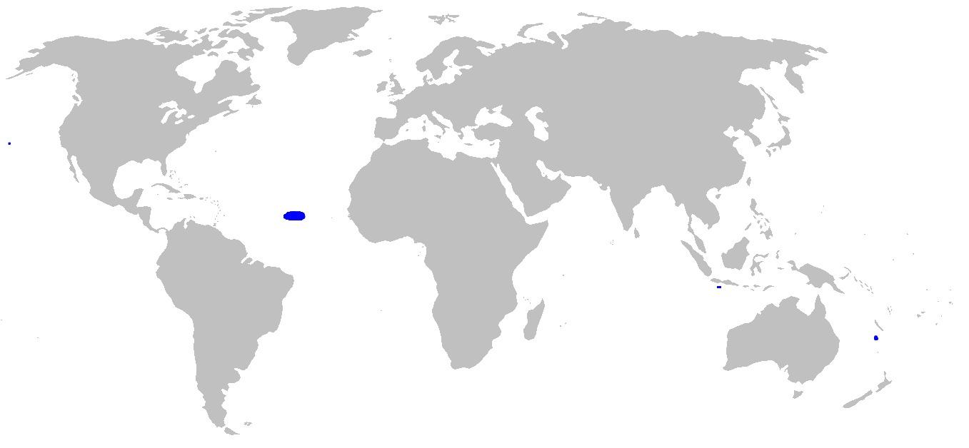 "<span class=""translation_missing"" title=""translation missing: en.medium.untitled.map_image_of, page_name: Holcomycteronus"">Map Image Of</span>"