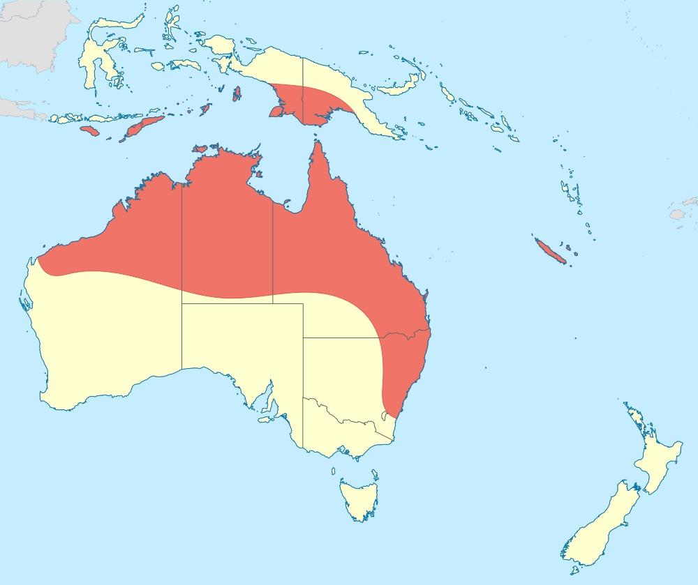 Map of Banded Flutterer