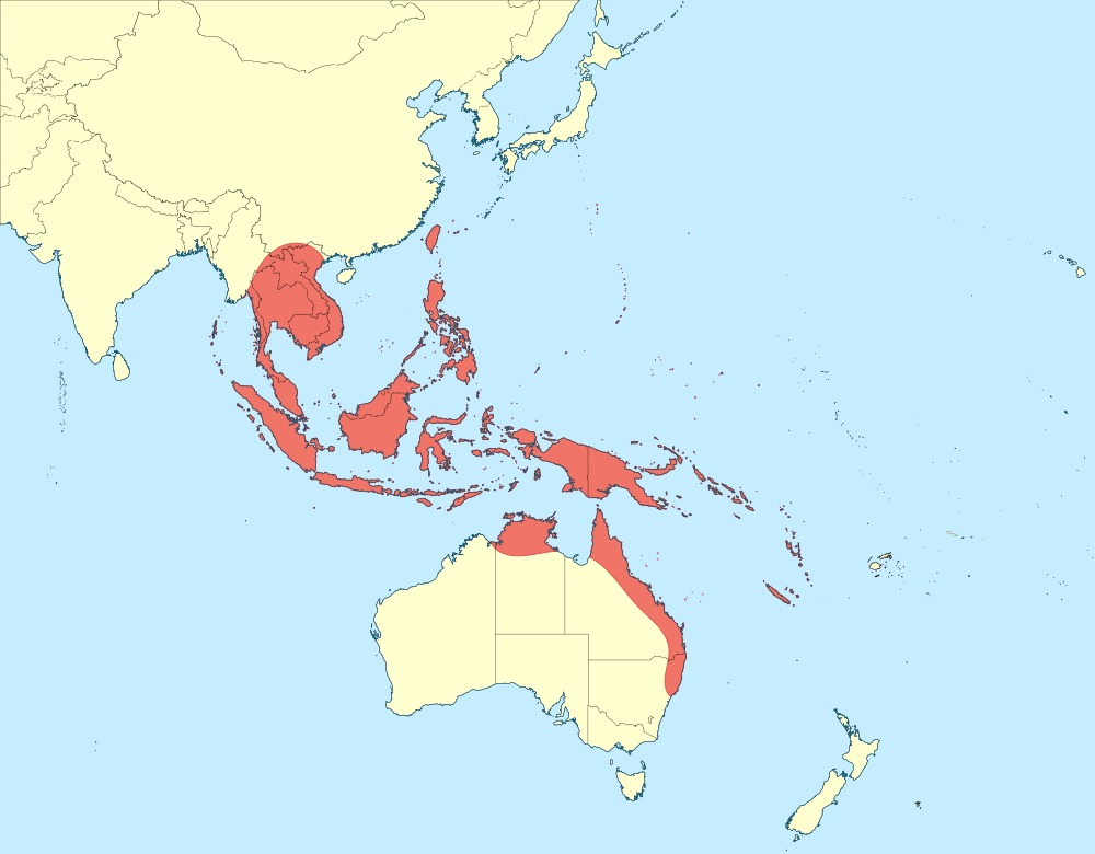 Map of Yellow-barred Flutterer