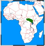 "<span class=""translation_missing"" title=""translation missing: en.medium.untitled.map_image_of, page_name: African Tropical Savannah Mongoose"">Map Image Of</span>"