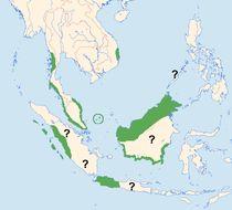 "<span class=""translation_missing"" title=""translation missing: en.medium.untitled.map_image_of, page_name: Black-nest Swiftlet"">Map Image Of</span>"