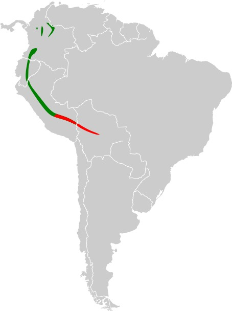 "<span class=""translation_missing"" title=""translation missing: en.medium.untitled.map_image_of, page_name: Mountain Cacique"">Map Image Of</span>"