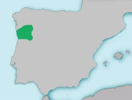 Map of Ruivaco