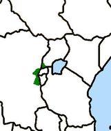 Map of Pseudocalyptomena Rothschild 1909