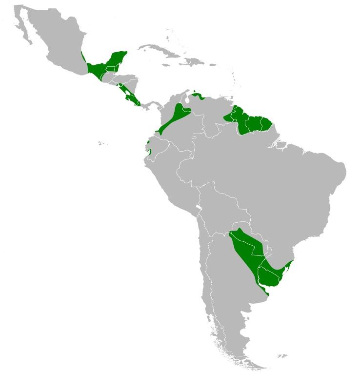 "<span class=""translation_missing"" title=""translation missing: en.medium.untitled.map_image_of, page_name: herons"">Map Image Of</span>"