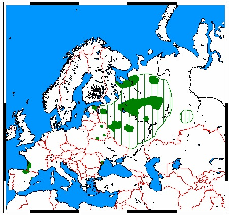 Map of European mink