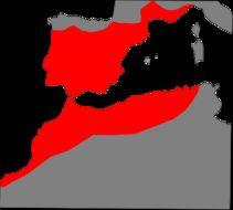 """<span class=""""translation_missing"""" title=""""translation missing: en.medium.untitled.map_image_of, page_name: &lt;i&gt;Malpolon monspessulanus&lt;/i&gt;"""">Map Image Of</span>"""