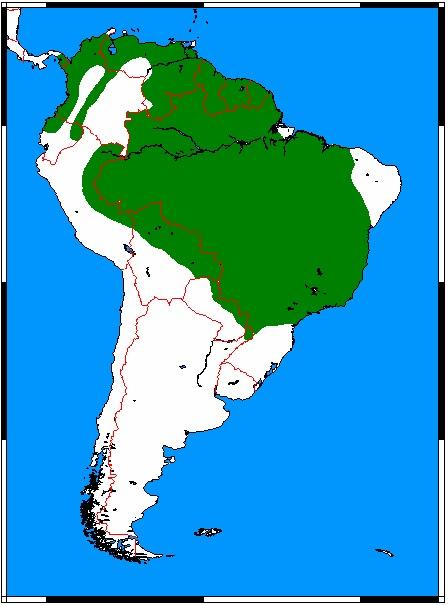 "<span class=""translation_missing"" title=""translation missing: en.medium.untitled.map_image_of, page_name: Bush Dog"">Map Image Of</span>"