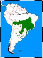 "<span class=""translation_missing"" title=""translation missing: en.medium.untitled.map_image_of, page_name: Maned Wolf"">Map Image Of</span>"