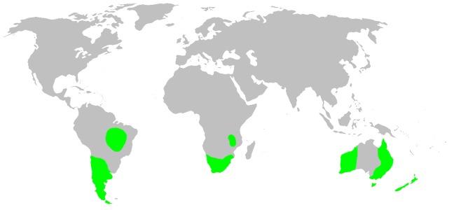 "<span class=""translation_missing"" title=""translation missing: en.medium.untitled.map_image_of, page_name: orsolobid spiders"">Map Image Of</span>"