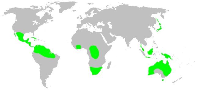 "<span class=""translation_missing"" title=""translation missing: en.medium.untitled.map_image_of, page_name: dwarf orbweavers"">Map Image Of</span>"