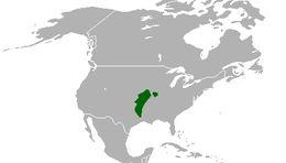 "<span class=""translation_missing"" title=""translation missing: en.medium.untitled.map_image_of, page_name: Massasauga Rattlesnake"">Map Image Of</span>"