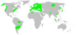 "<span class=""translation_missing"" title=""translation missing: en.medium.untitled.map_image_of, page_name: Missing Sector Orb Web Spider"">Map Image Of</span>"