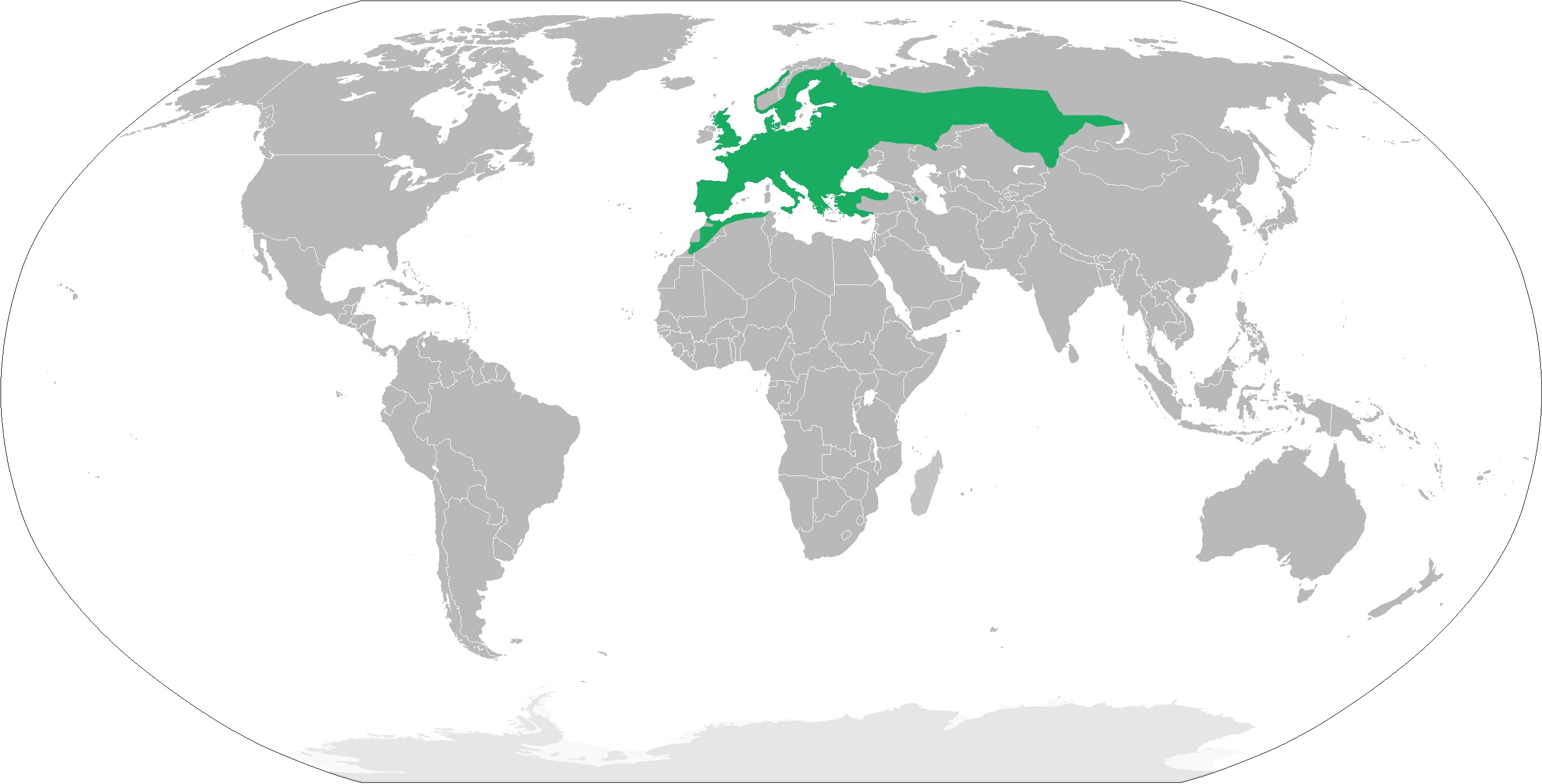 """<span class=""""translation_missing"""" title=""""translation missing: en.medium.untitled.map_image_of, page_name: european toad"""">Map Image Of</span>"""