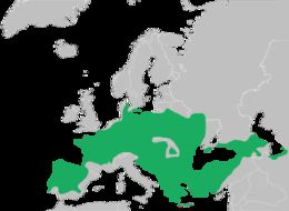 Map of European tree frog