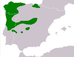 "<span class=""translation_missing"" title=""translation missing: en.medium.untitled.map_image_of, page_name: Iberian Frog"">Map Image Of</span>"